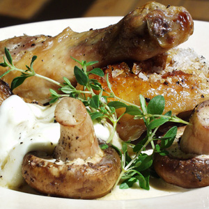 Kylling med svamperagout og timian