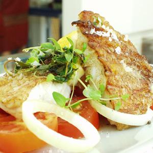 Stegt rødfisk med tomatsalat